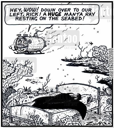 seabed cartoon humor: 'Hey,WOW! Down over to our left, Rick! A HUGE Manta Ray resting on the Seabed!'