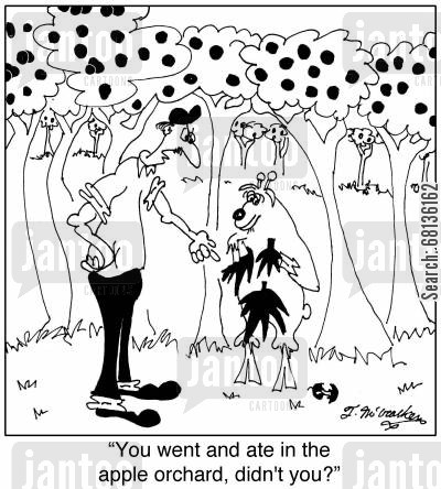 orchard cartoon humor: 'You went and ate in the apple orchard, didn't you?'