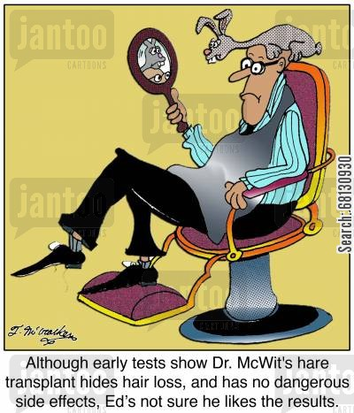 hair transplant cartoon humor: Although early tests show Dr. McWit's hare transplant hides hair loss, and has no dangerous side effects, Ed's not sure he likes the results.