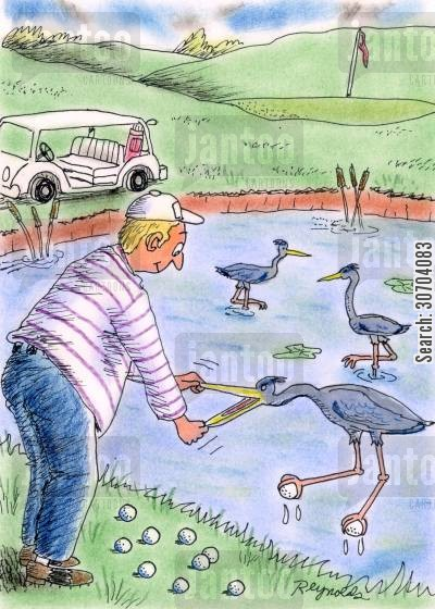 birds receiving golf balls cartoon humor: Crane receives golf balls.