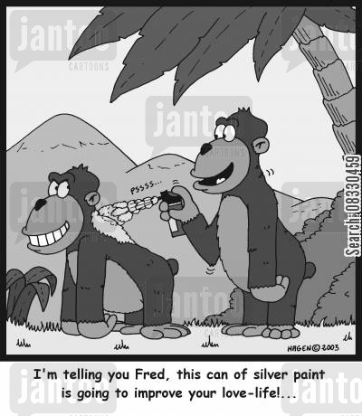 silver back gorillas cartoon humor: 'I'm telling you Fred, this can of silver paint is going to improve your love-life!...'