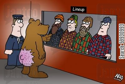 line-up cartoon humor: A bear points out the hunter who shot him in the bum in a police line-up