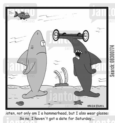stigma cartoon humor: Listen, not only am I a hammerhead, but I also wear glasses