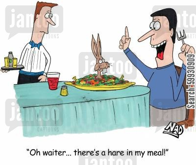 health inspectors cartoon humor: A rabbit pokes his head out of a guys meal - 'Oh waiter... there's a hare in my meal!'