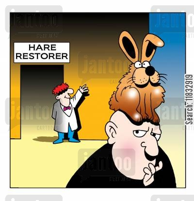 hair restorer cartoon humor: Hare restorer.