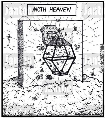 bulbs cartoon humor: Moth Heaven