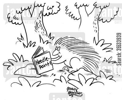 porcupines cartoon humor: Porcupine reading book on 'Needlepoint'