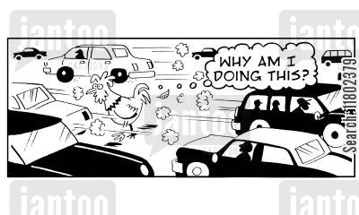 traffic safety cartoon humor: 'Why am I doing this?' thinks chicken crossing the road.