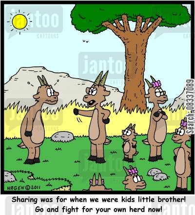 sibling rivalry cartoon humor: 'Sharing was for when we were kids little brother! Go and fight for your own herd now!'
