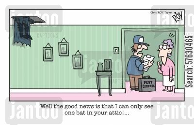 attic cartoon humor: Well the good news is that I can only see one bat in your attic!