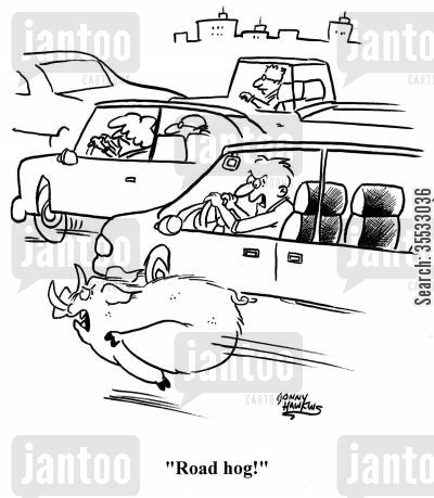 courteous drivers cartoon humor: Man sees boar running down road and yells, 'Road Hog!'
