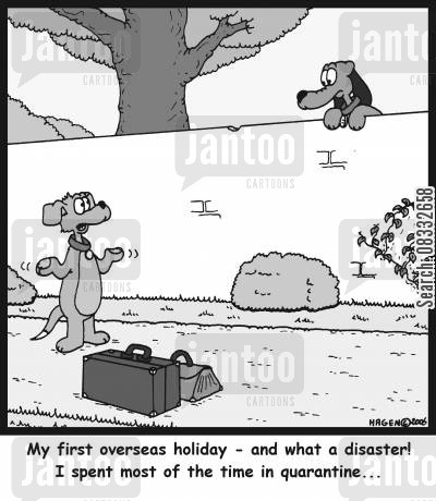 holiday disasters cartoon humor: 'My first overseas holiday - and what a disaster! I spent most of the time in quarantine...