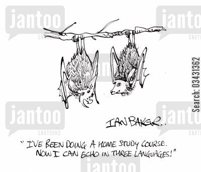 home study cartoon humor: 'I've been doing a home study course. Now I can echo in three languages!'