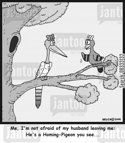 homing pigeons cartoon humor: 'Me, I'm not afraid of my husband leaving me: He's a Homing-Pigeon you see...'
