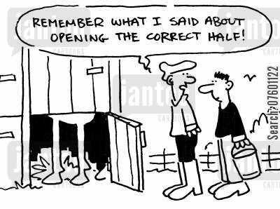 stud farm cartoon humor: 'Remember what I said about opening the correct half!'