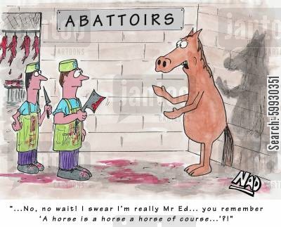 abbatoir cartoon humor: Mr Ed at the Abattoirs - '...No wait! I swear I'm really Mr Ed... you remember, 'A horse is a horse a horse of course...'?!'