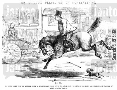 bucking cartoon humor: Mr Briggs's Pleasures of Horsekeeping - No. IX