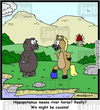 cousins cartoon humor: 'Hippopotamus means river horse? Really? We might be cousins!'
