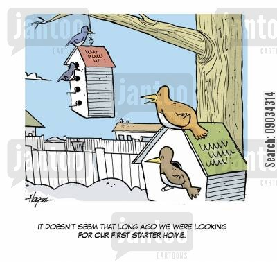 first house cartoon humor: Starter Homes