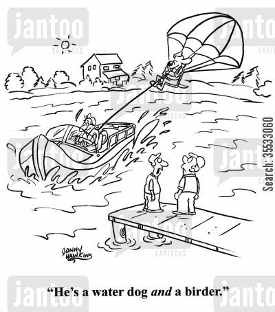 dog loverswater sports cartoon humor: Man about dog parasailing: 'He's a water dog and a birder.'