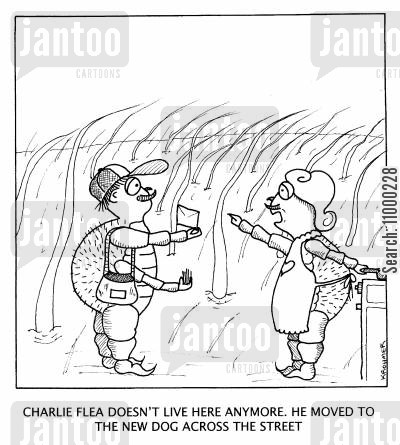 flea cartoon humor: Charlie doesn't live here anymore. He moved to the new dog across the street.