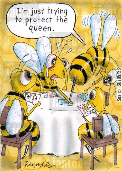 queen cards cartoon humor: 'I'm just trying to protect the Queen.'