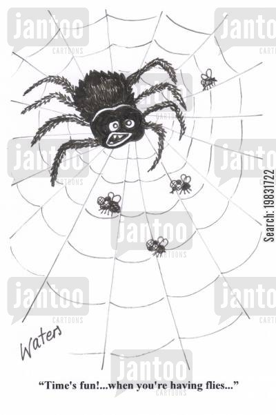 spider web cartoon humor: 'Time's fun!....when you're having flies...'