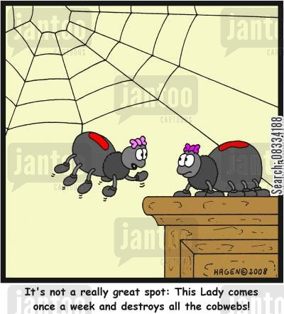 house proud cartoon humor: 'It's not a really great spot: This Lady comes once a week and destroys all the cobwebs!'