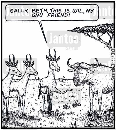 mates cartoon humor: Male Springbok: 'Sally,Beth,this is Will, my Gnu friend'