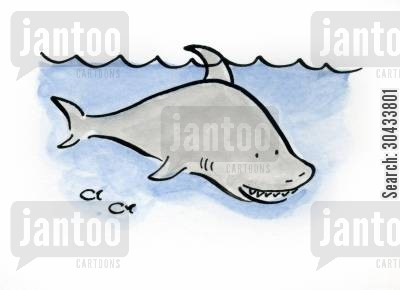 pacific cartoon humor: Shark