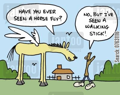 playing with words cartoon humor: Have you ever seen a horse fly? No, but I've seen a walking stick!