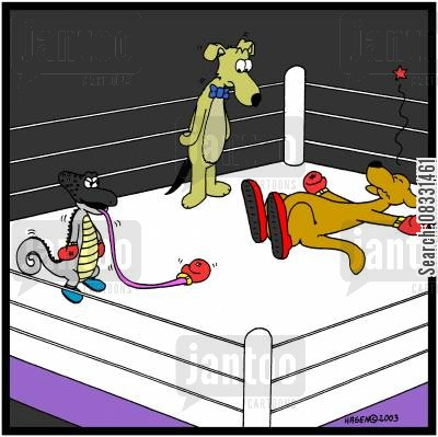 faught cartoon humor: Chameleon knocking out a kangaroo with its tongue.