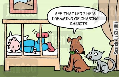 dreaming dogs cartoon humor: See that leg? He's dreaming of chasing rabbits.