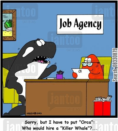 orca cartoon humor: 'Sorry, but I have to put 'Orca': Who would hire a 'Killer Whale'?...'