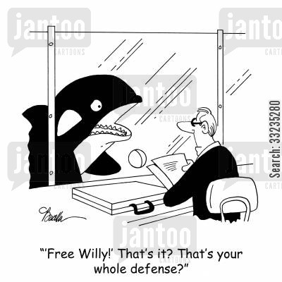 free willy cartoon humor: ''Free Willy?' That's it? That's your whole defense?'