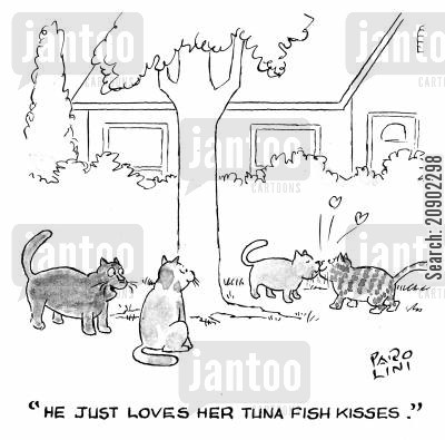 kitty food cartoon humor: 'He just loves her tuna fish kisses.'