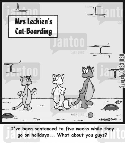 cattery cartoon humor: 'I've been sentenced to five weeks while they go on holidays... What about you guys?'