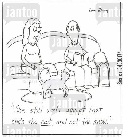 snooty cartoon humor: 'She still won't accept that she's the cat, and not the meow.'