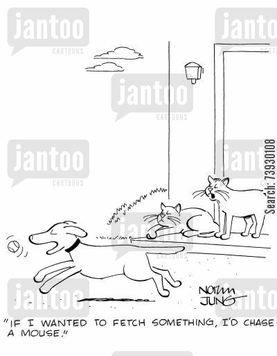 superiority complex cartoon humor: 'If I wanted to fetch something, I'd chase a mouse.'