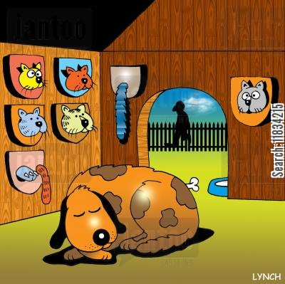 dog houses cartoon humor: Dog's Trophy Room