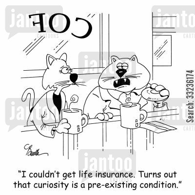 curiosity killed the cat cartoon humor: 'I couldn't get life insurance. Turns out that curiosity is a pre-existing condition.'