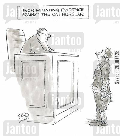 burgling cartoon humor: Incriminating Evidence Against the Cat Burglar.