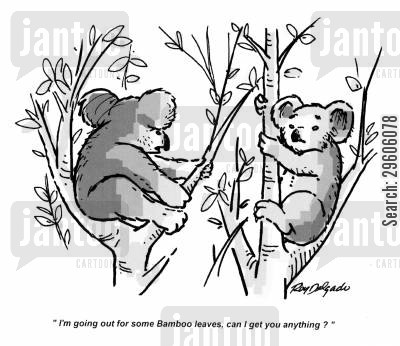 bamboo cartoon humor: 'I'm going out for some bamboo leaves, can I get you anything?'
