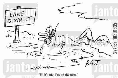 tarns cartoon humor: Hi, it's me. I'm on the tarn.