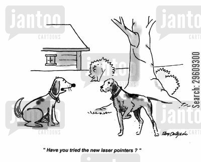 laser cartoon humor: 'Have you tried the new laser pointers?'