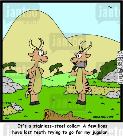 gazelle cartoon humor: 'It's a stainless-steel collar: A few lions have lost teeth trying to go for my jugular...'
