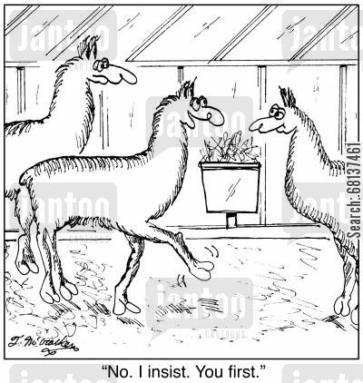 llama farms cartoon humor: 'No. I insist. You first.'