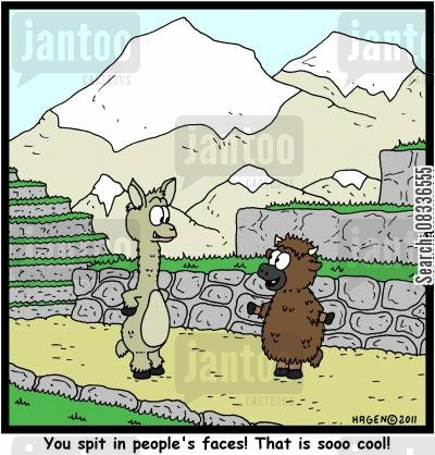 llama cartoon humor: 'You spit in people's faces! That is sooo cool!'