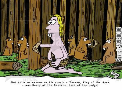cousins cartoon humor: Not quite as famous as his cousin - Tarzan, King of the Apes - was Barry of the Beavers, Lord of the Lodge!