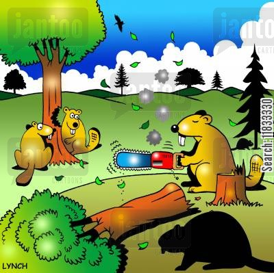 cutting down trees cartoon humor: Lazy beaver.